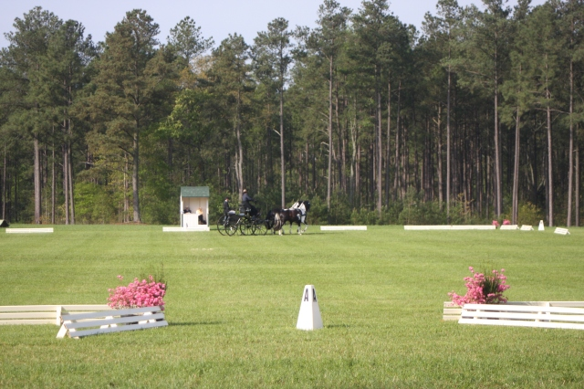 Driven Dressage Ring