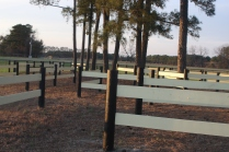 close up of the Pine Tree obstacle